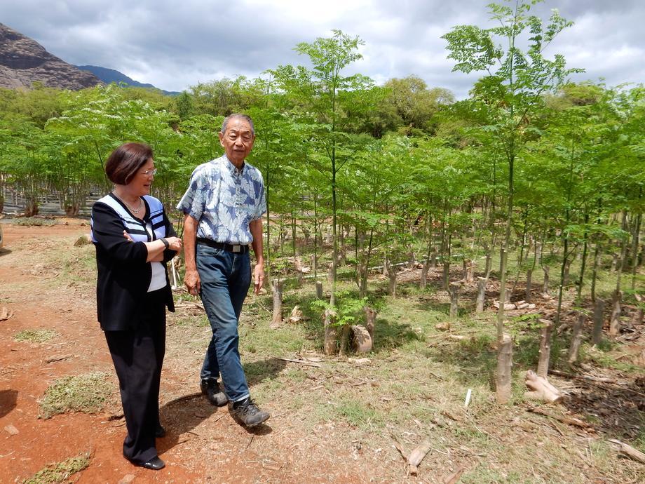 Korean Natural Farming Visit